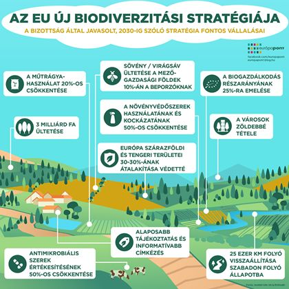 biodiverzitás